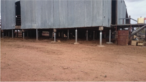 Why Raise A Shearing Shed With LevelMaster Adjustable Stumps?